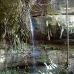15 min de marche pour rejoindre cette jolie cascade d'eau douce