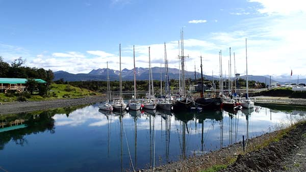 Micalvi, Puerto Williams