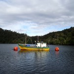 Caleta Punta Lynch, bateau de pêche entre 2 bouées