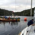 Caleta Punta Lynch, L'Envol sur la bouée des pêcheurs
