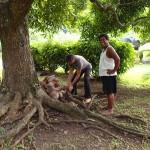 Deuxième leçon : le débourrage de coco