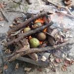 Fruits de l'arbre à pains au feu de bois
