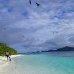 Kouaku, l'île aux oiseaux