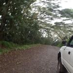 En stop vers Puamau