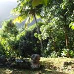 Tikis perdus dans la jungle à 30 min de Hane