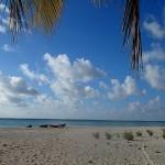 Réunion d'annexes sur le reef NE de Makemo