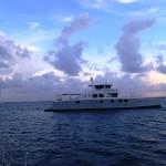 Ieta, un étonnant catamaran de 24 mètres fait maison !