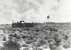 Train de minerai dans son paysage de désolation