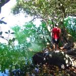 Eaux vertes du lac Lalolalo