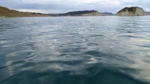 Pétole, la baie de Tolaga nous accueille