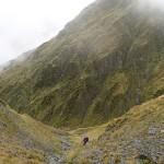 La roide dégringolade vers la confortable Top Kokatahi Hut (1040m)