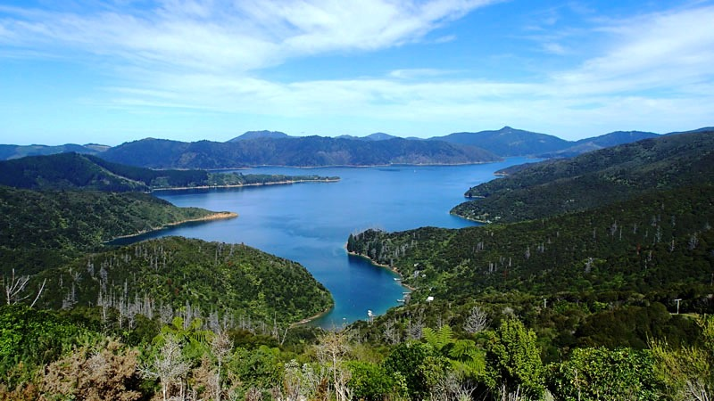 Bay of Many Coves et Queen Charlotte Sound