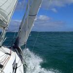 Tamaki Strait et Auckland, 20 Mn de près nerveux