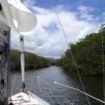 Dans la mangrove, en approche du mouillage…
