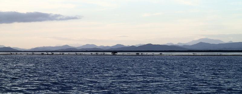 Non loin de Boat Pass, le long du récif Thaavaam