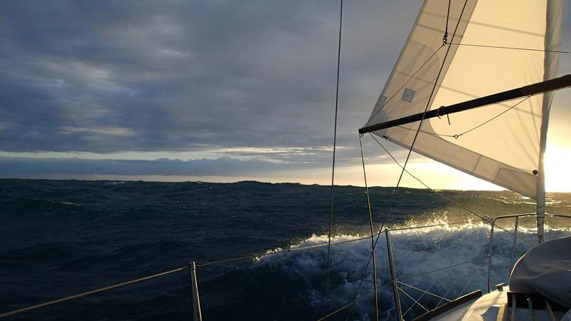 Golfe de Carpentaria