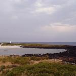 En balade autour de la charmante Griffith Island