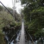 Le pont suspendu au-dessus de la rivière Franklin