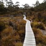 Chemins de bois vs marais insondables (Loddon Plains)