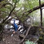 Corvée d'eau acrobatique dans le lac Vera