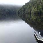 Réflexions sur les eaux lénifiantes
