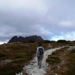 Cradle Mountain (1545m)