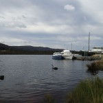 Black Swan et ancien steamer à Franklin