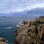 La Tasman Sea avant D'Entrecasteaux Channel