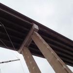 L'Envol sous le Tasman Bridge
