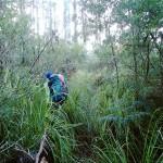 A la recherche du chemin perdu de Denmans Cove (jour 1)