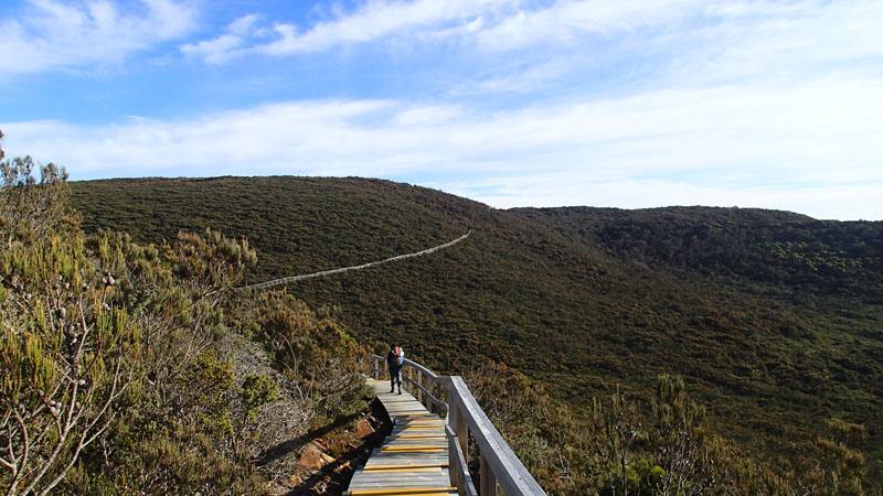 « La muraille de Tasmanie »