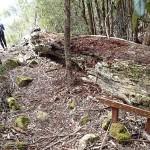 Clark Cliffs Circuit (Tasman Peninsula)